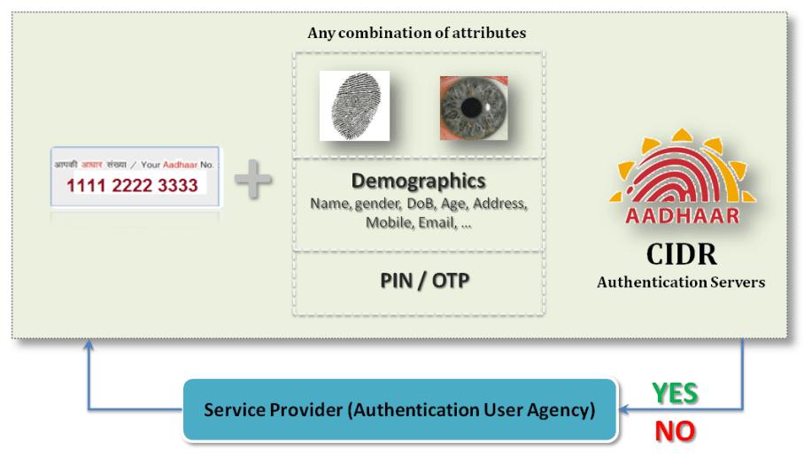 Aadhaar project server provider